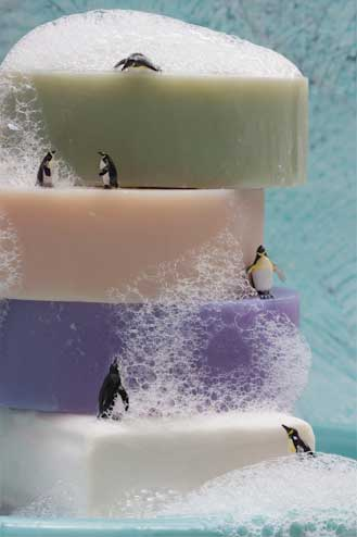 Penguin Spa by Judy Robinson-Cox